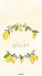 JUILLET-VERR-7.png